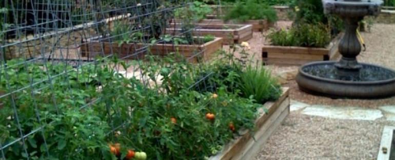 Past Raised Bed Gardens