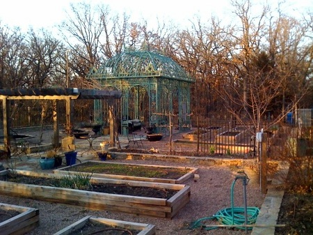 Past Raised Bed Gardens Elm Tree Garden